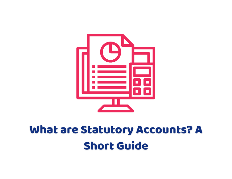 What are Statutory Accounts
