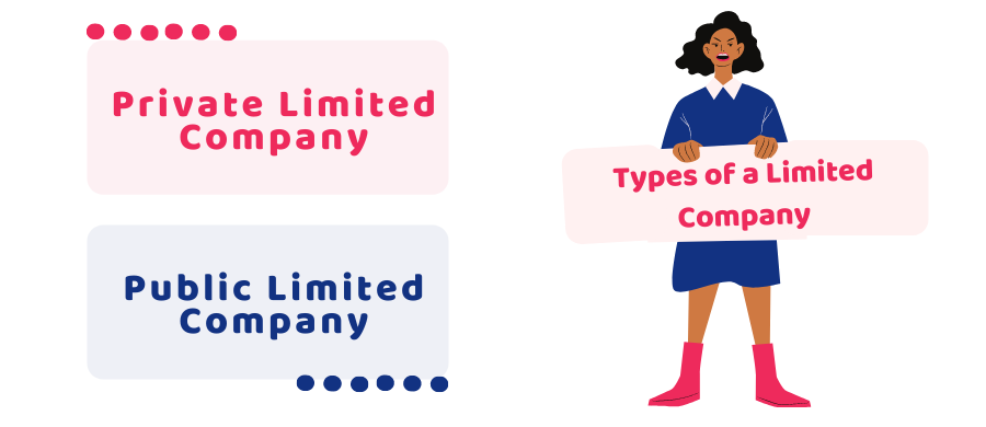 types of a limited company